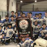 Piedmont Predators 14U Division III Winners