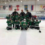 Mite B Silver Stick Champion Arrows Hockey